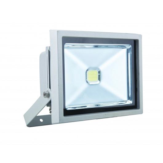 Projecteur à LED Gris  20W